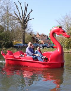 We distribute a range of pedalos for the UK leisure industry. Top brands including Pelican, Future Beach &amp; Leisure Pedalos. <br /><br />Yes we are the people who supply those famous Swan&nbsp;&amp; Dragon Pedalos! <br /><br /><br />We also supply the car pedalo, the Pelican Fiji, Monaco, Rainbow and Sunkiss. The Future Beach Waterbee 200, Waterbee 400 &amp; the mini&nbsp;dolphin paddler. <br /><br /><br />We offer all these boats to demo at&nbsp; leamboatcentre.com &amp; warwickboats.co.uk. They are also available at boat hire venues across the UK. Contact us for more info.